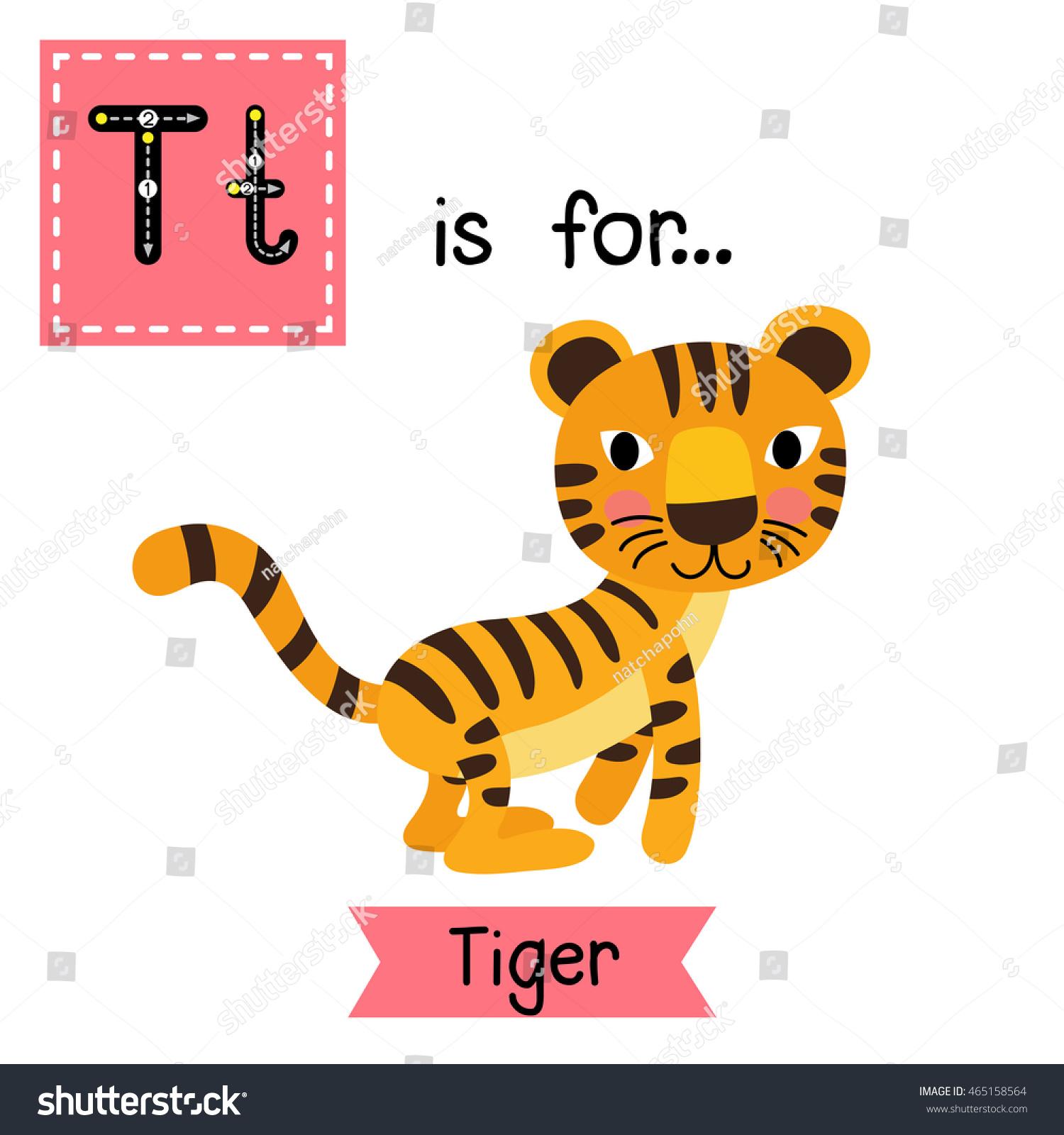 Cute Children Zoo Alphabet T Letter Stock Vector