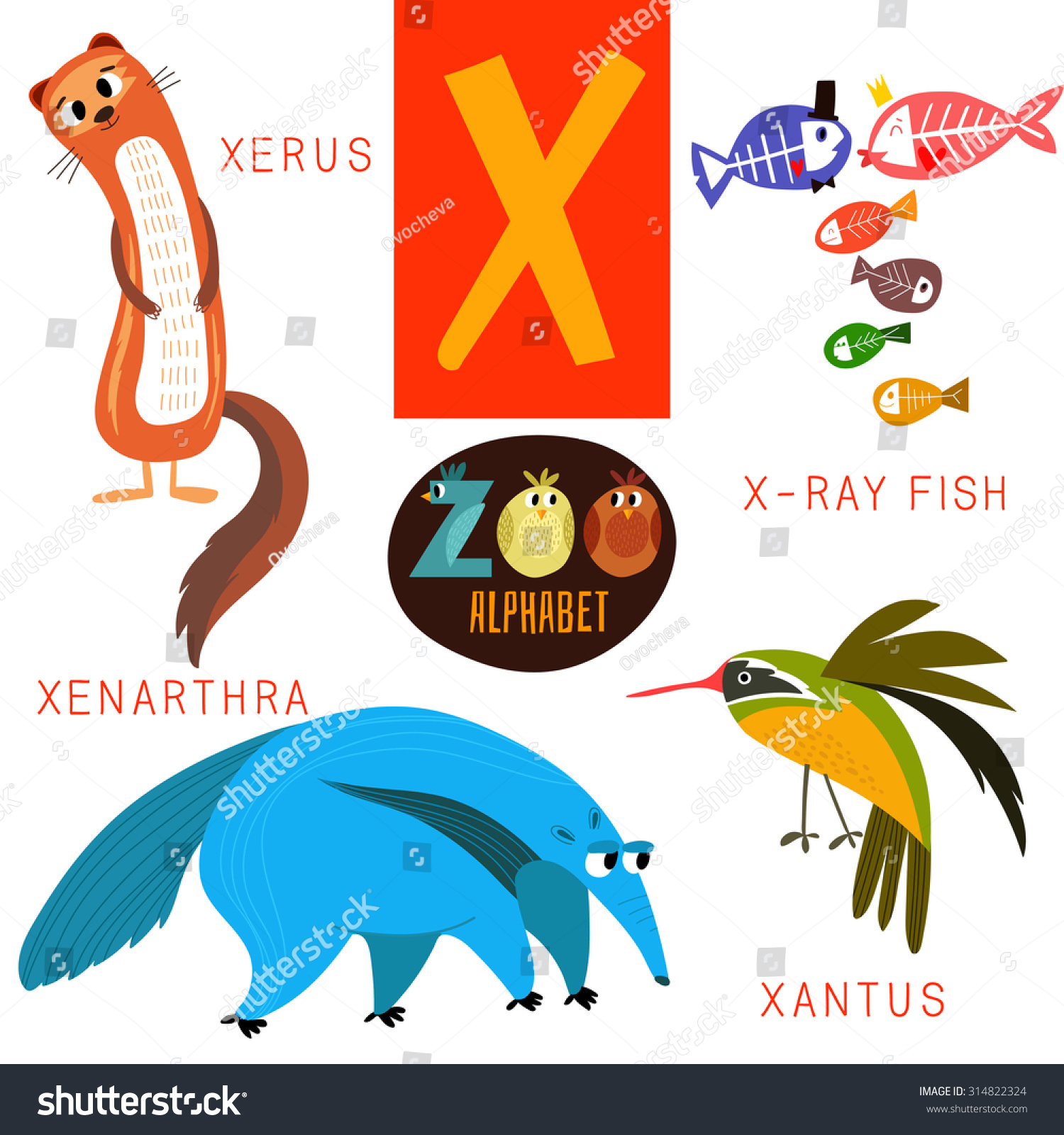 Cute Zoo Alphabet Vectorx Letter Funny Stock Vector