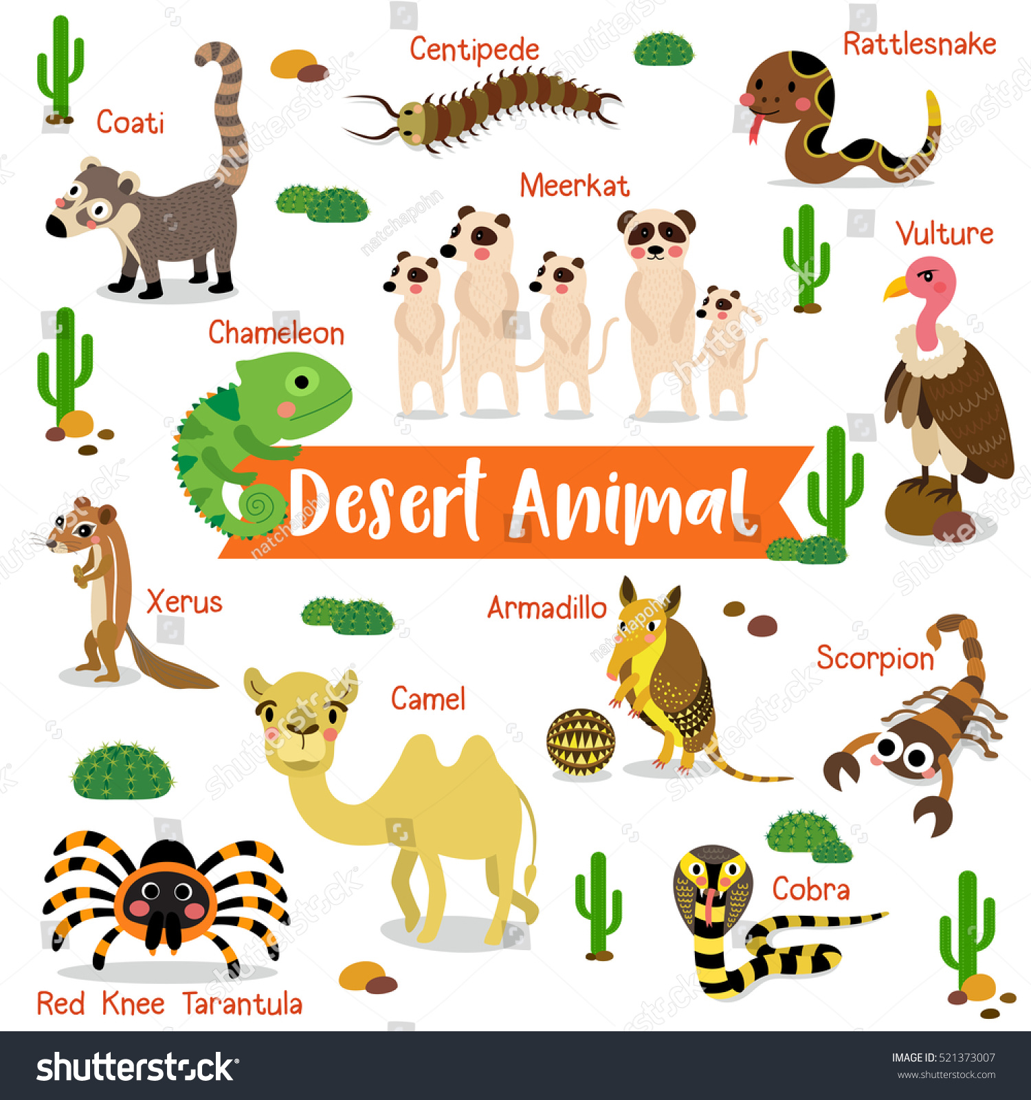 Desert Creature Cartoon On White Background Stock Vector