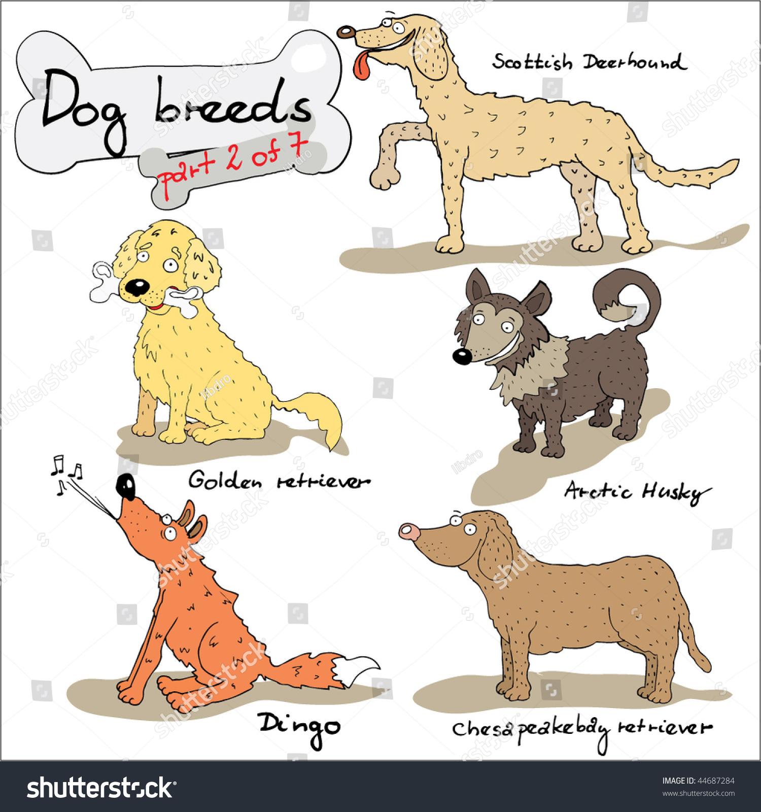 Dog Breeds Worksheet