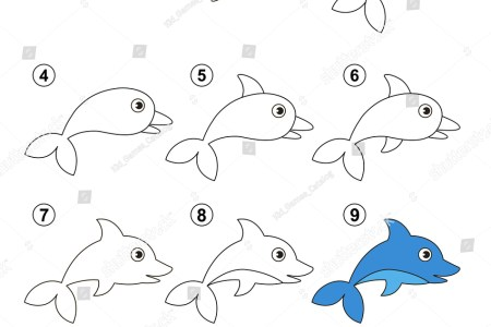 drawing dolphins tutorial dolphin jpg how to draw a dolphin pop path step now our cute baby dolphin is all done hope you had fun drawing him i know i did