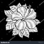 Embroidery Hibiscus Flower Craft Botanical Ethnic Stock Vector Royalty Free 1063241972
