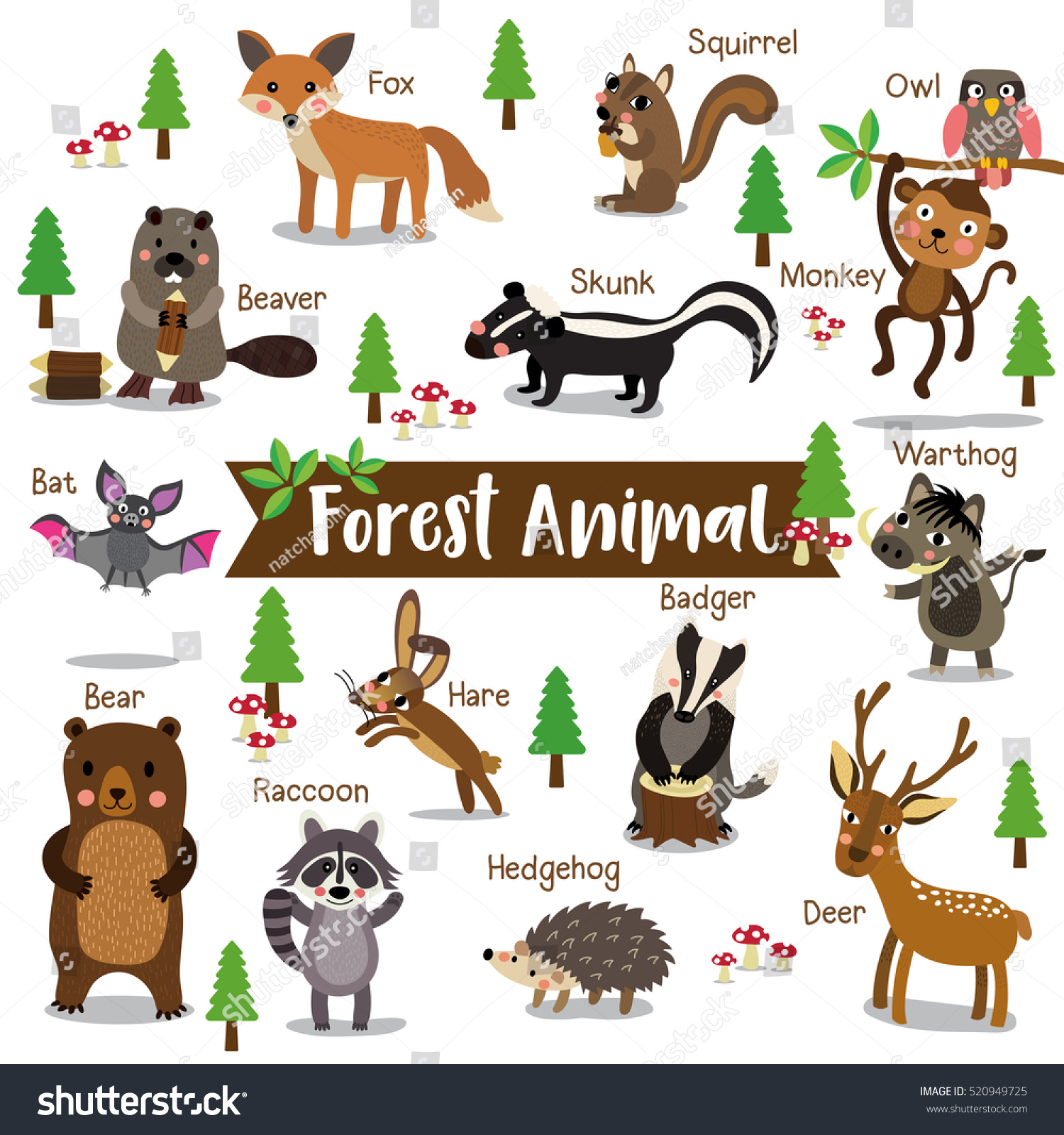 Forest Animal Cartoon On White Background With Animal Name
