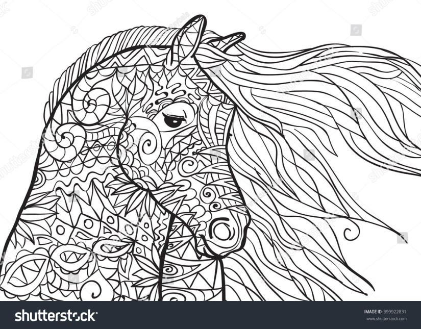hand drawn coloring pages horses head stock-vektorgrafik