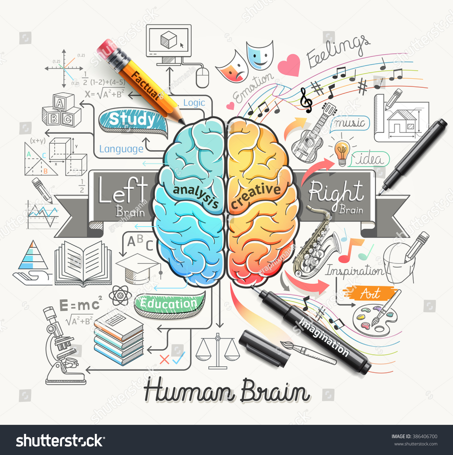 Human Brain Diagram Doodles Icons Style Stock Vector