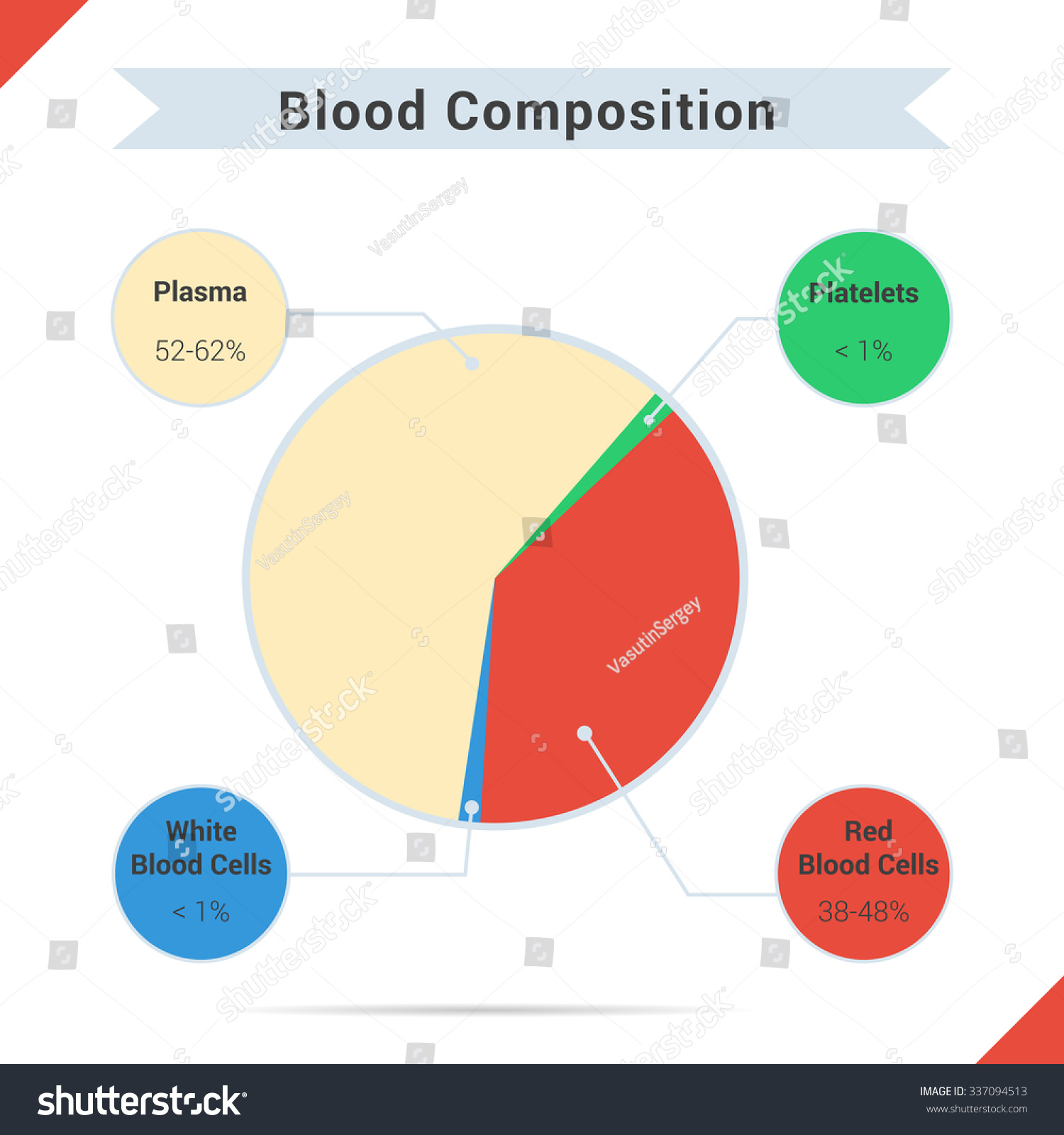 Infographics Blood Composition Chart Four Components Stock