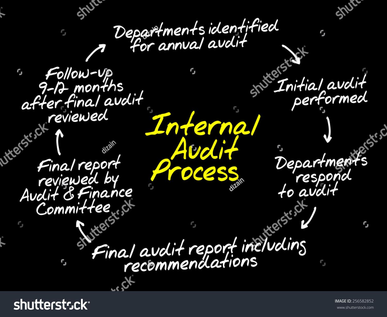 Internal Audit Process Flow Chart Business Stock Vector