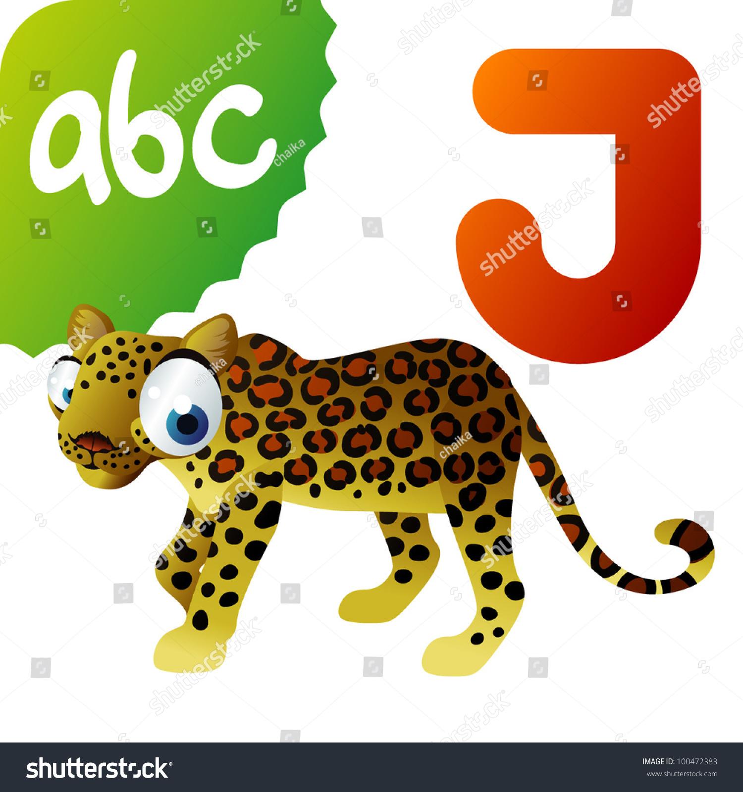 J Is For Jaguar Stock Vector Illustration
