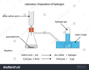 Labeled Diagram Laboratory Preparation Hydrogen Zinc Stock