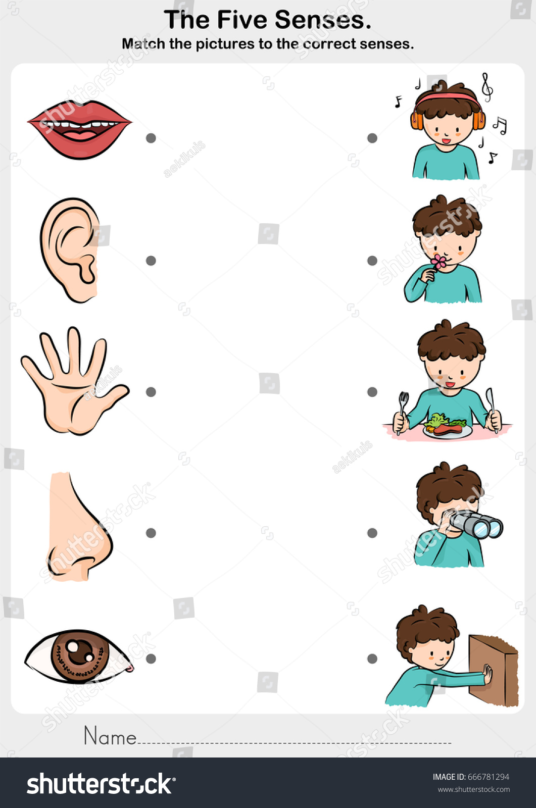 Math Picture Correct Five Senses Touch Stock Vector