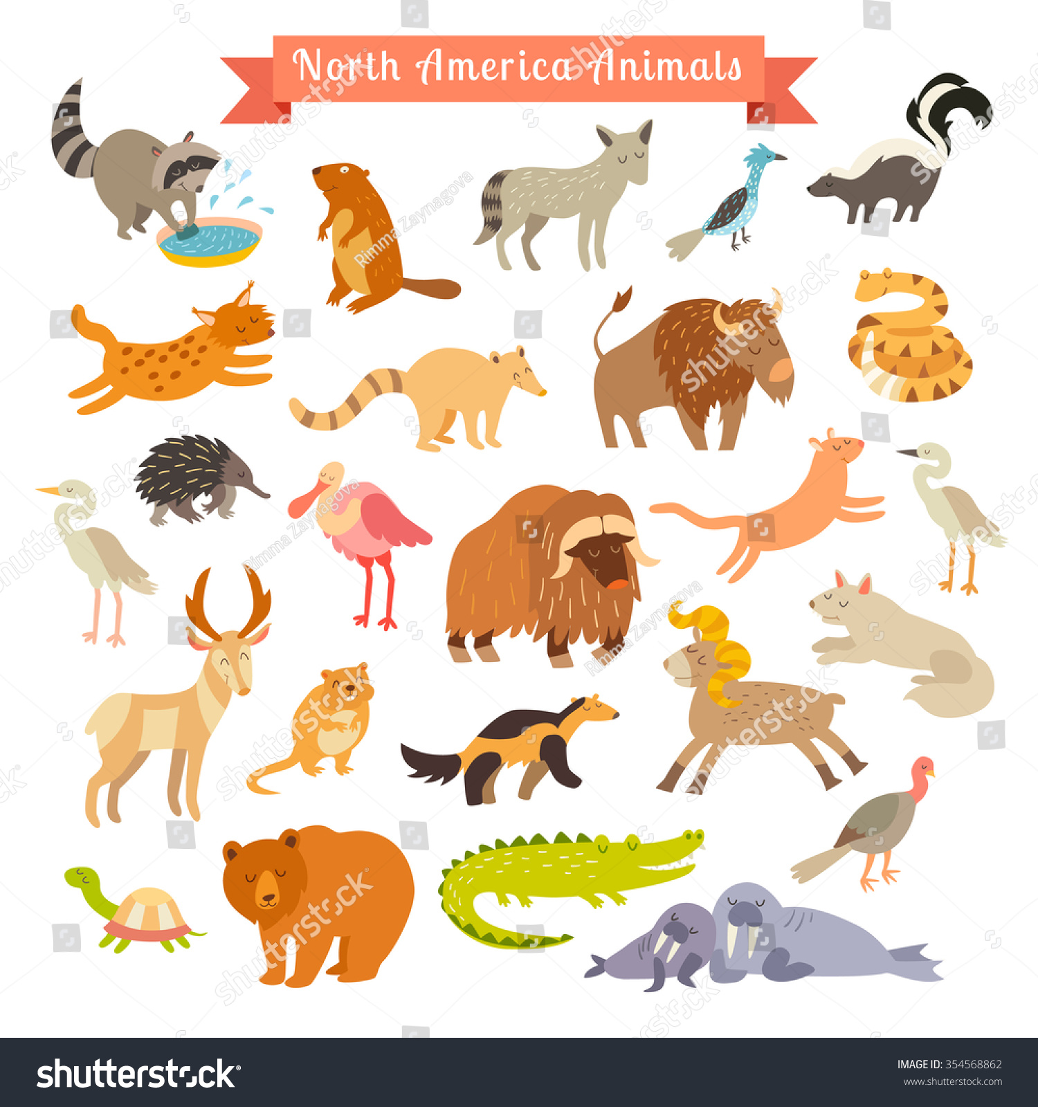 North America Animals Vector Illustration North America