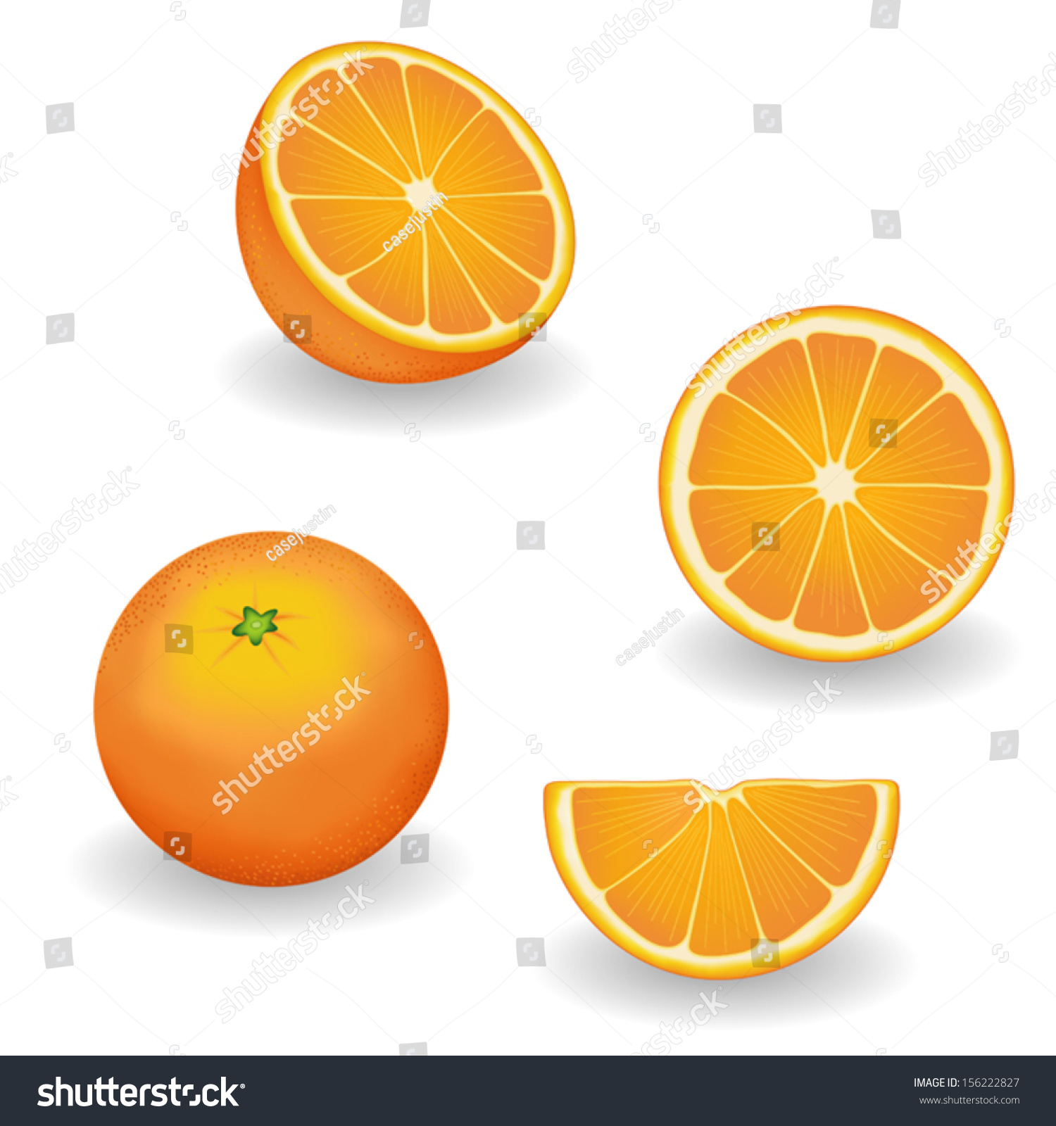 Oranges Four Views Whole Half Slice Stock Vector