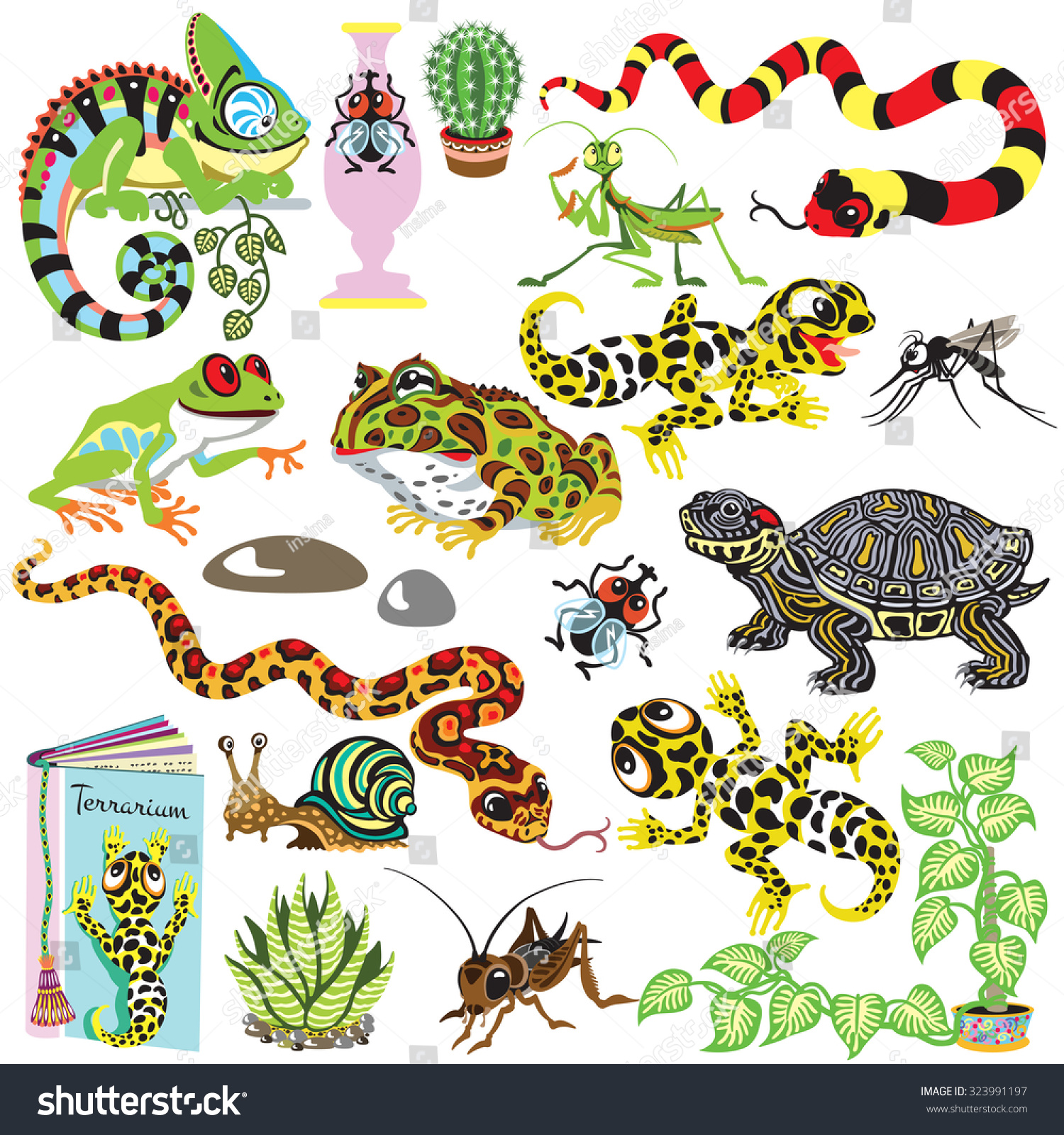 Reptiles Set Amphibians Insects Isolated Cartoon Stock