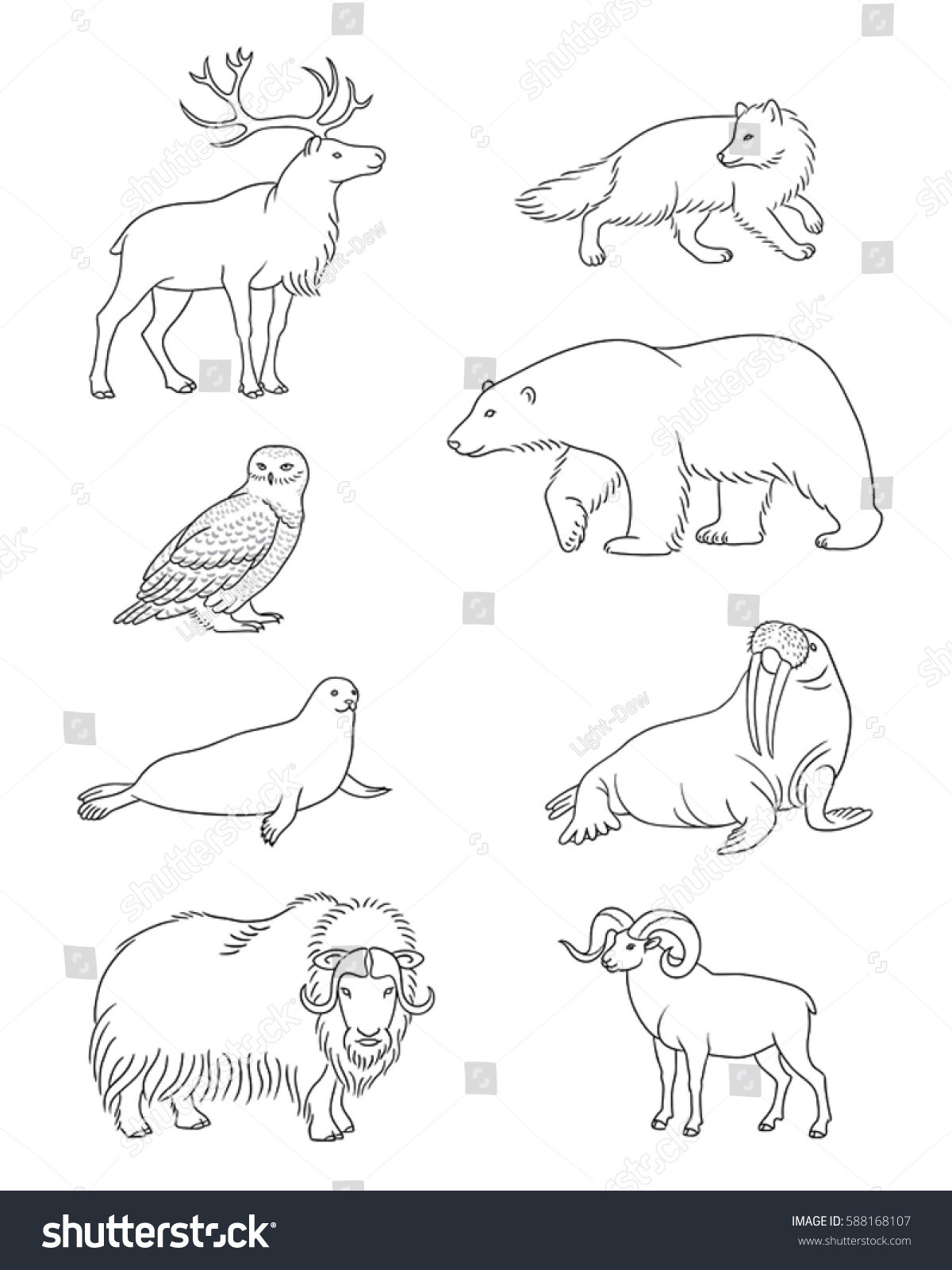 Set Stylized Vector Arctic Animals Contours Stock Vector