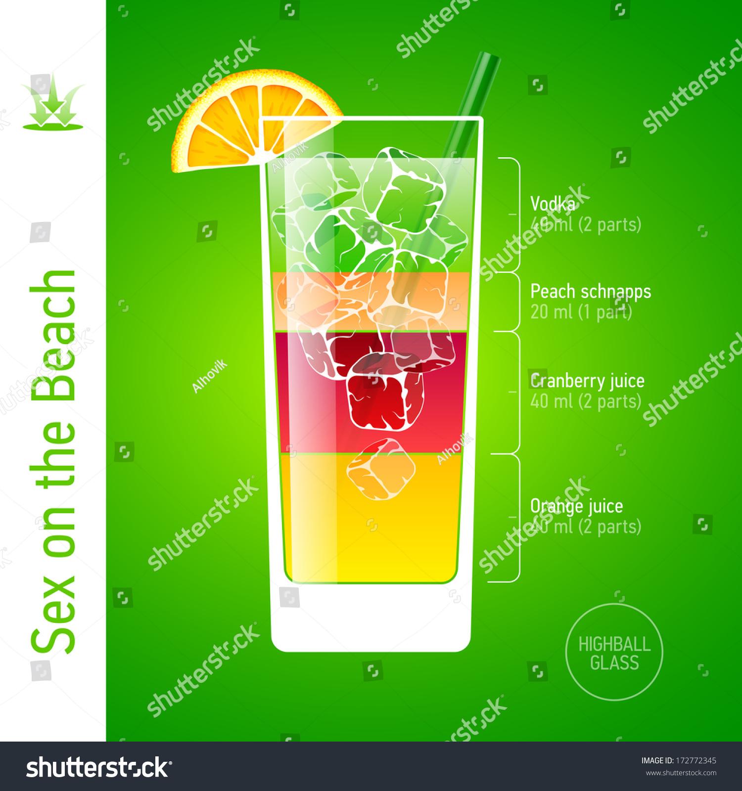 https www shutterstock com fr image vector sex on beach cocktail ingredients vector 172772345