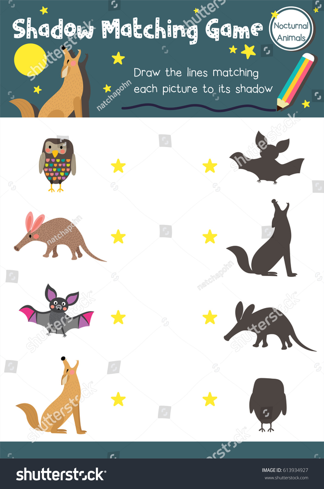 Shadow Matching Game Nocturnal Animals Preschool Stock Vector