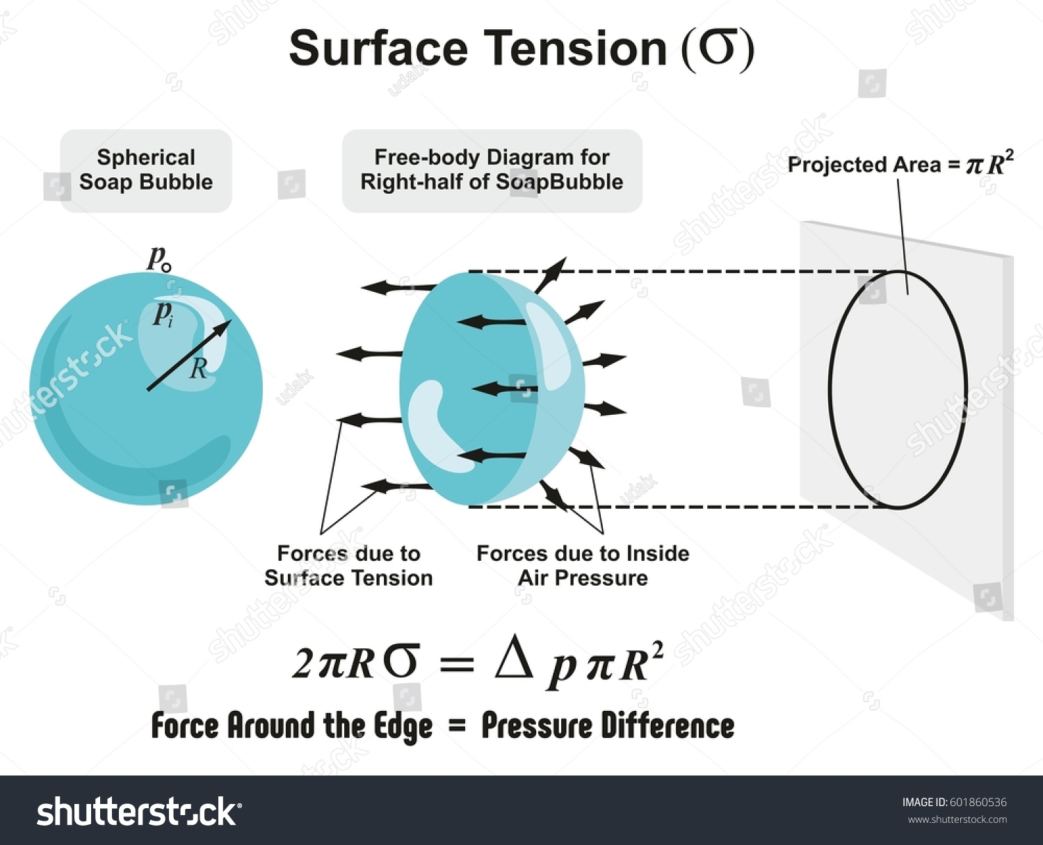 Surface Tension Physics Lesson Spherical Soap Stock Vector