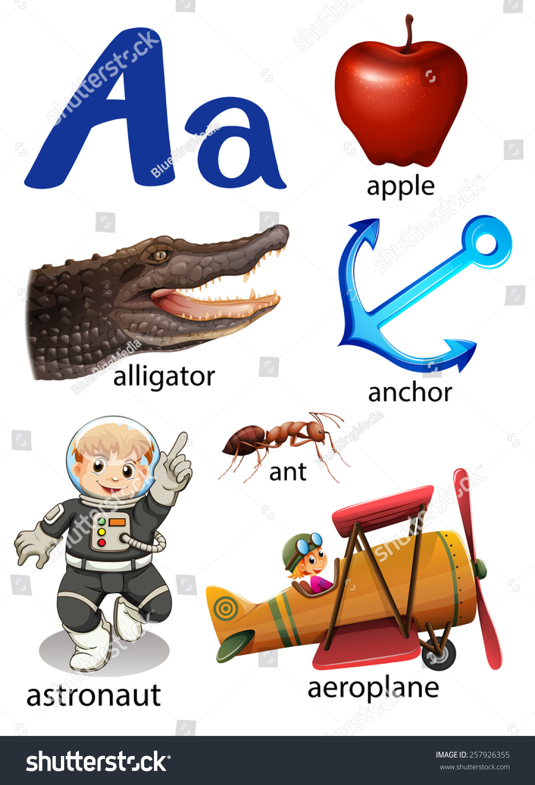 Things That Start With The Letter A On A White Background