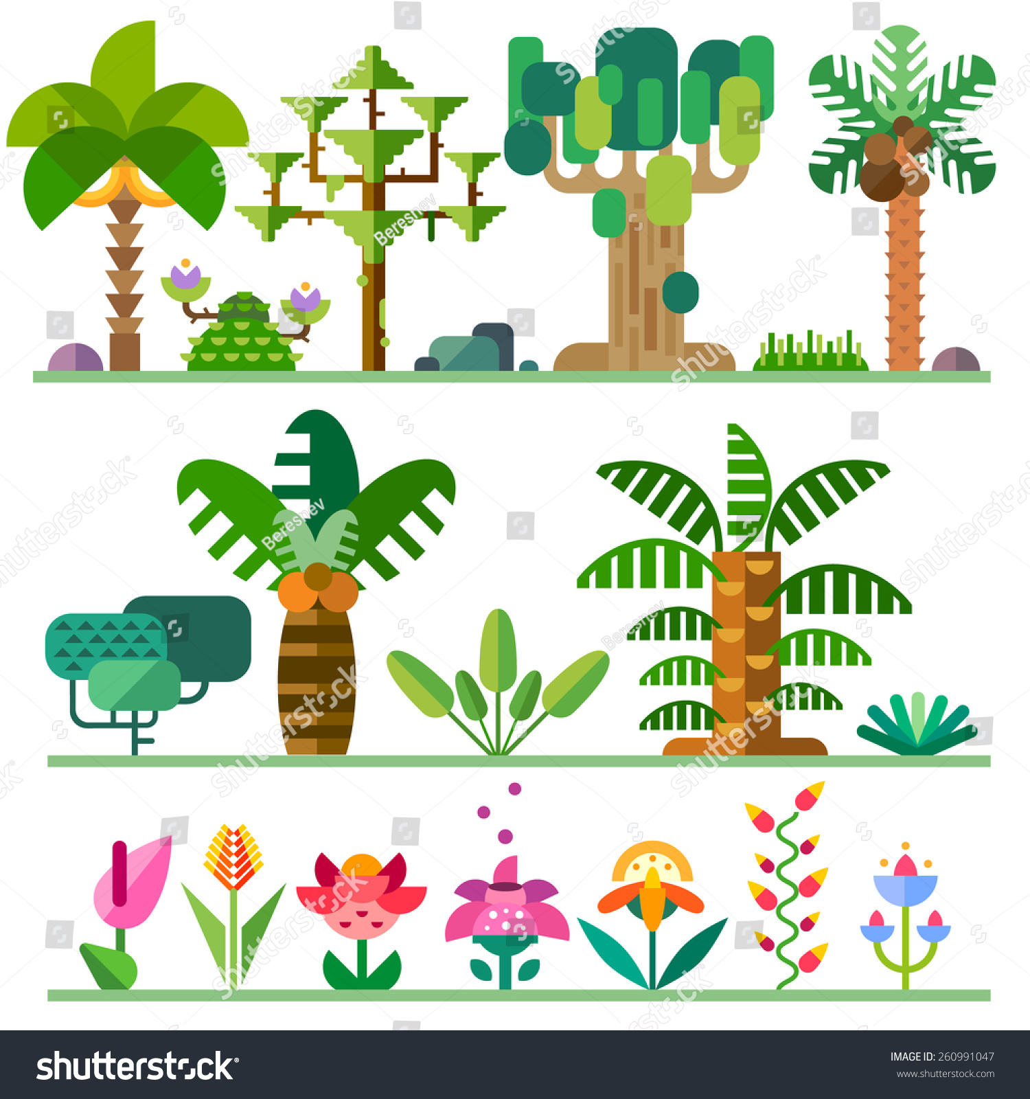 Tropical Plants Different Types Trees Flowers Stock Vector