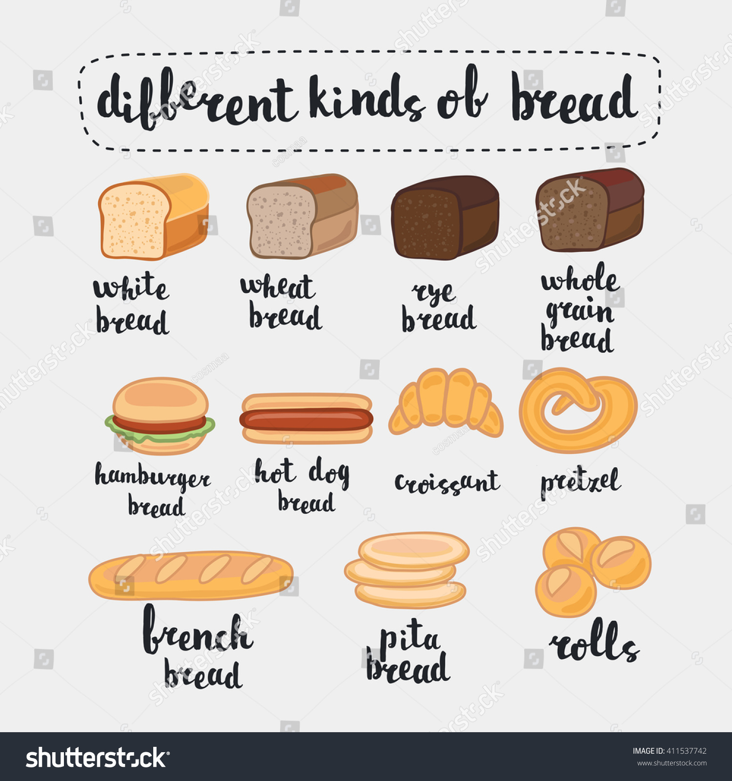 Vector Illustration Different Kinds Bread Isolated Stock