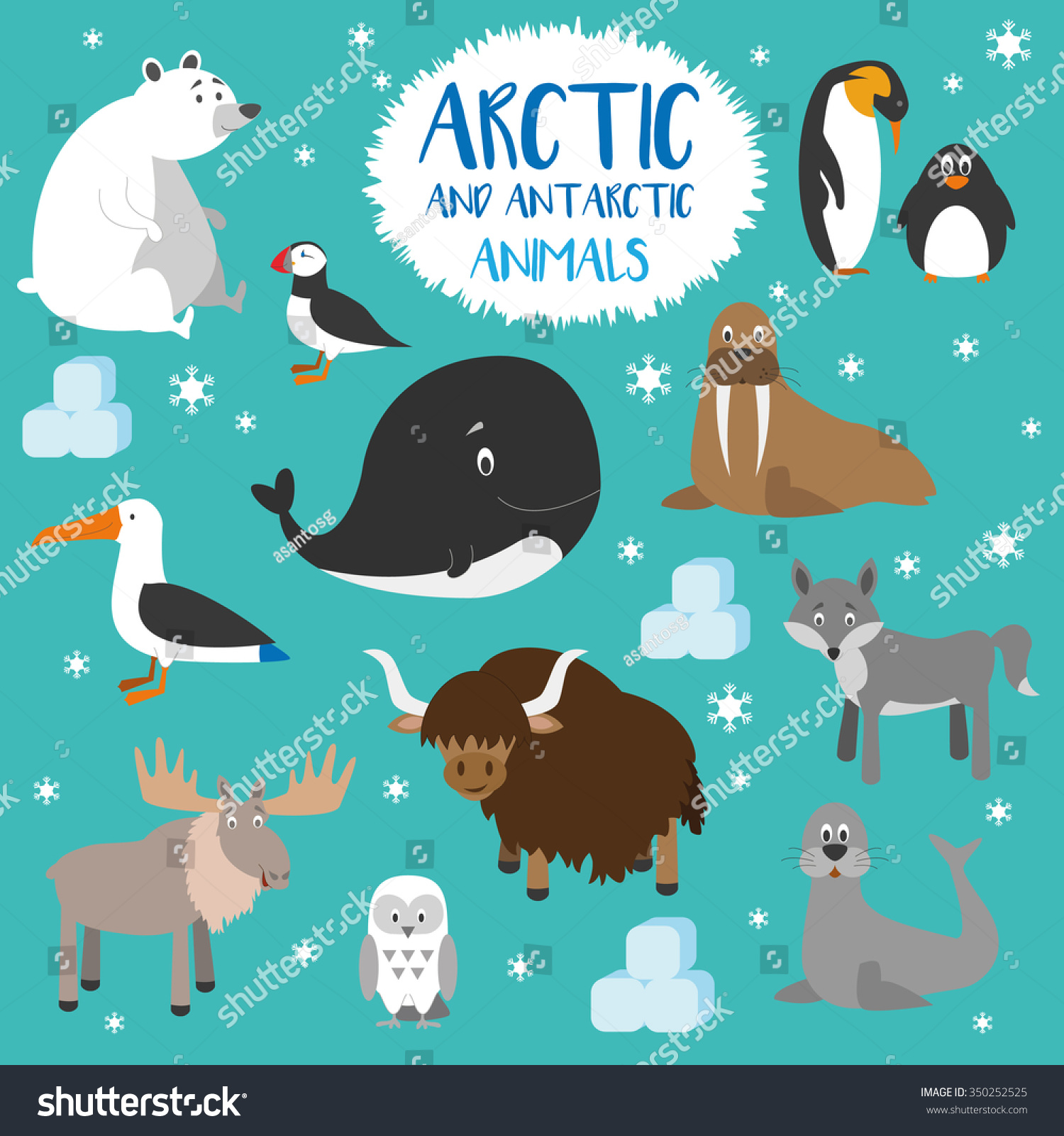 Vector Set Arctic Antarctic Animals Penguin Stock Vector