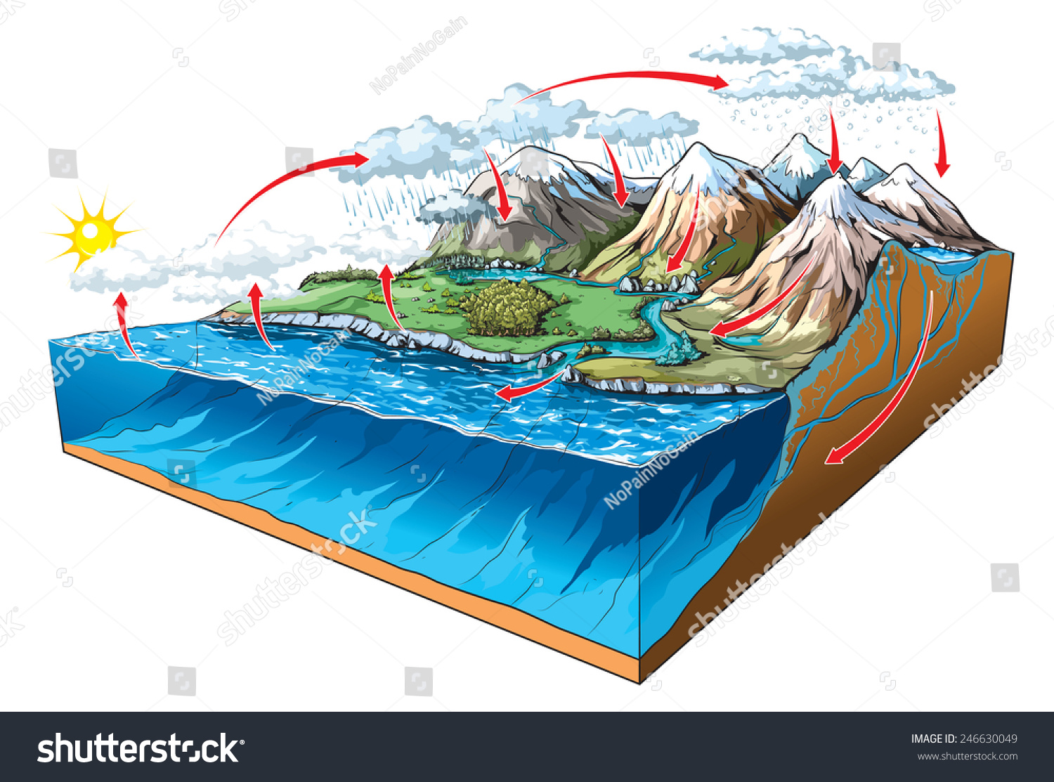 Water Circulation On Earth Stock Vector