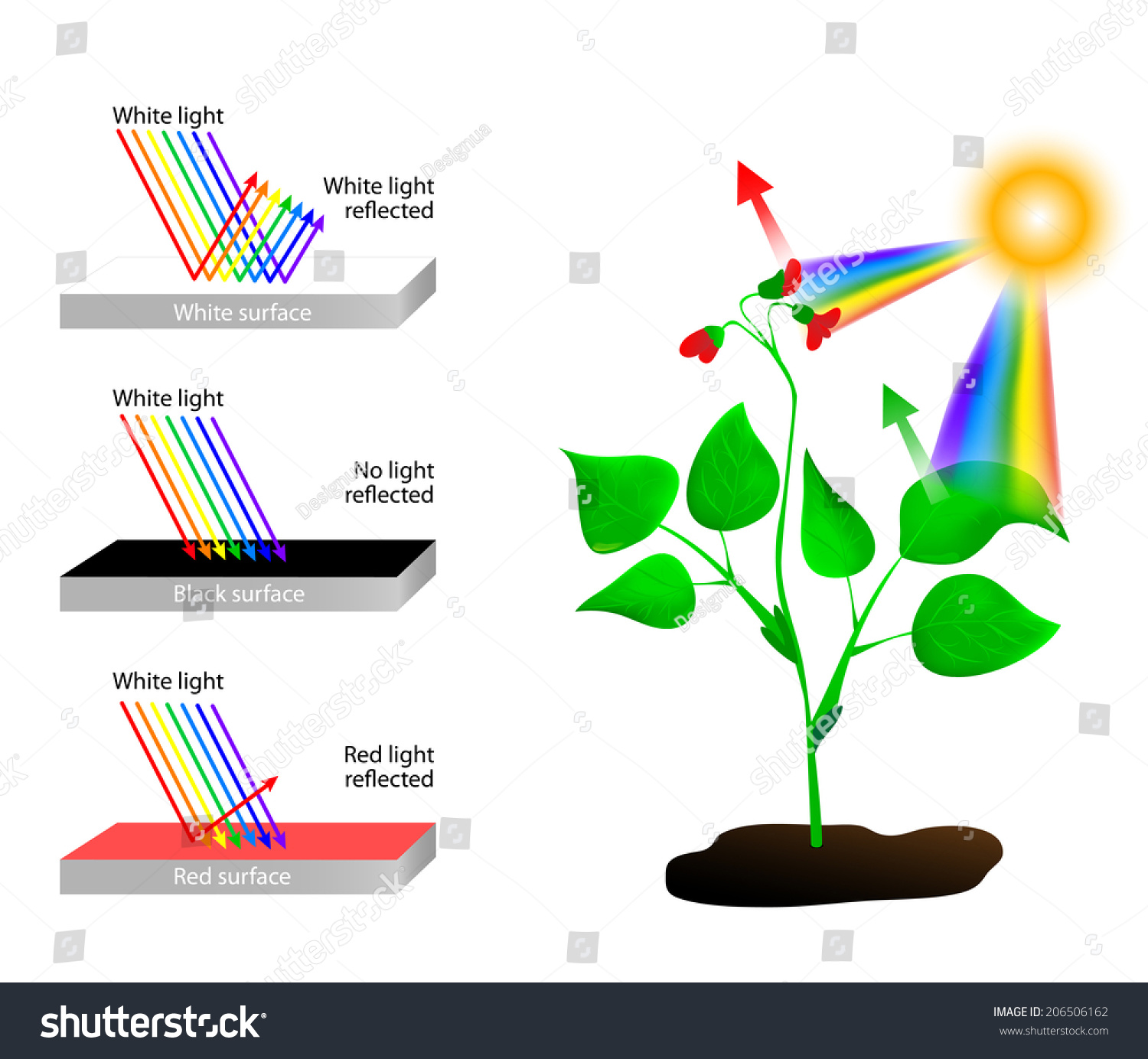 White Reflects All Colors Light Object Stock Vector