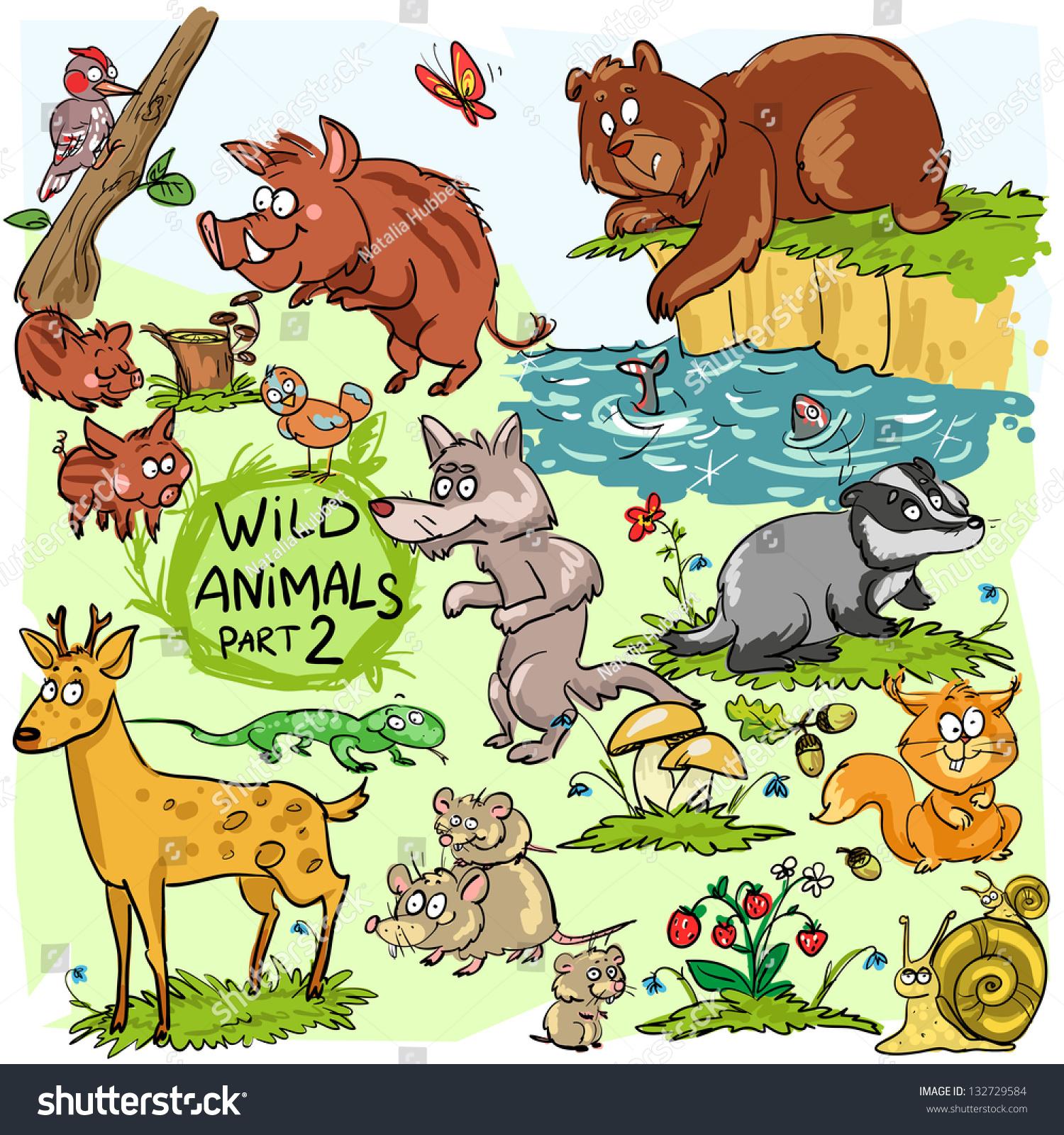 Mammals Wild Animal Best Blog Wild Animals Homes Names