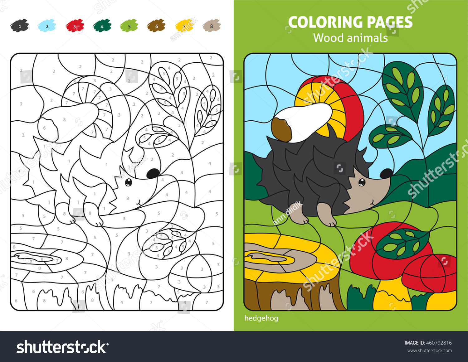 Wood Animals Coloring Page Kids Hedgehog Stock Vector