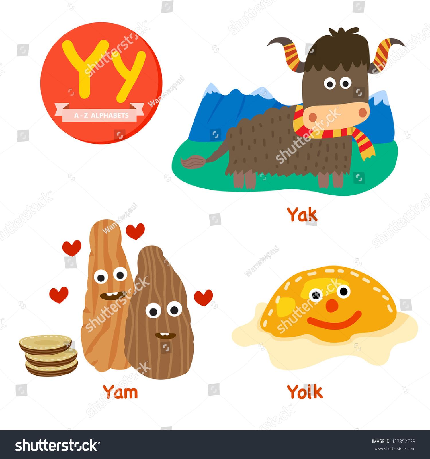 Y Vocabulary Cartoon Set With Yak Yam And Yolk Isolated On White Background Illustration