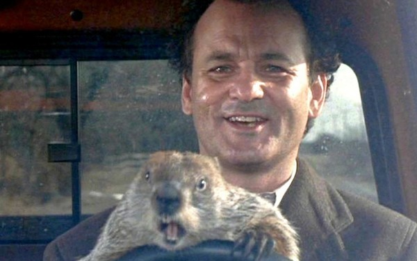 Image result for bill murray groundhog day