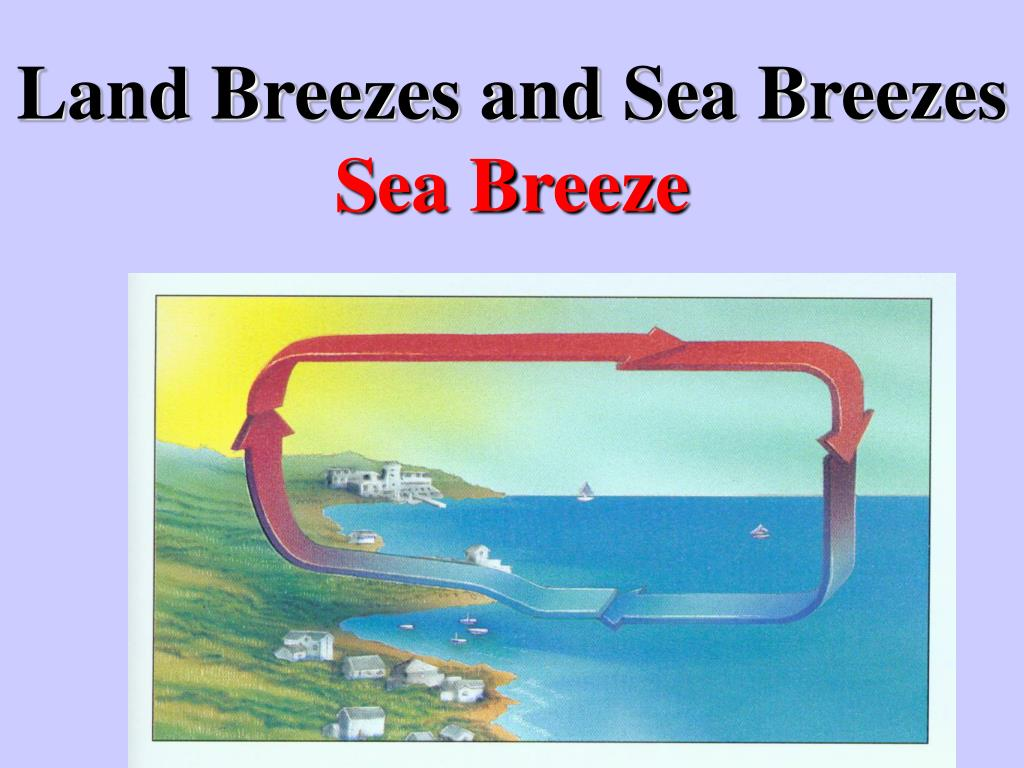 Worksheet On Land Breeze And Sea Breeze