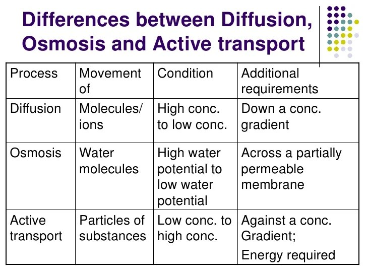 Similarities And Differences Between Diffusion Osmosis Facilitated