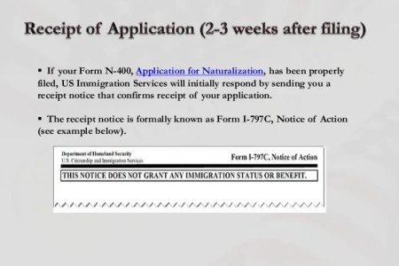 Free Application Forms N Form Download Application Forms