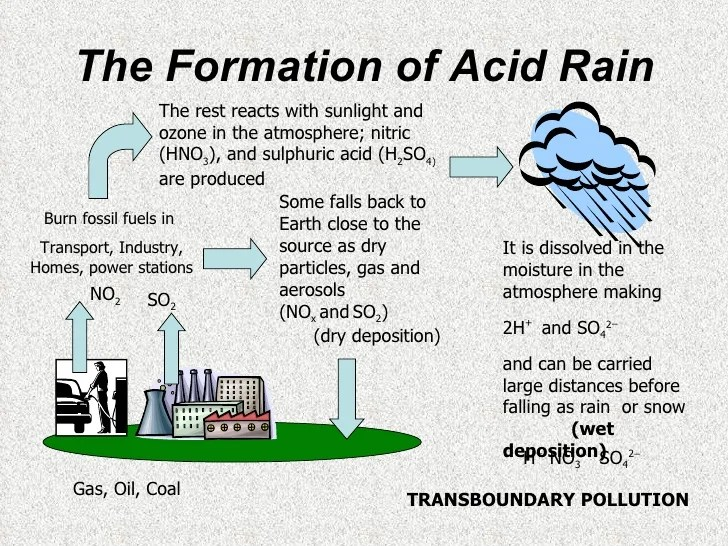 Image result for acid rain