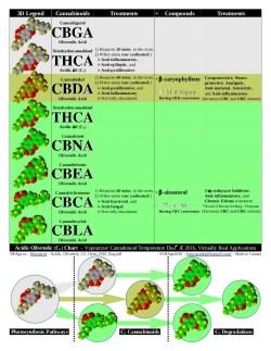 Acidic Cannabinoid Charts  - Long Chain