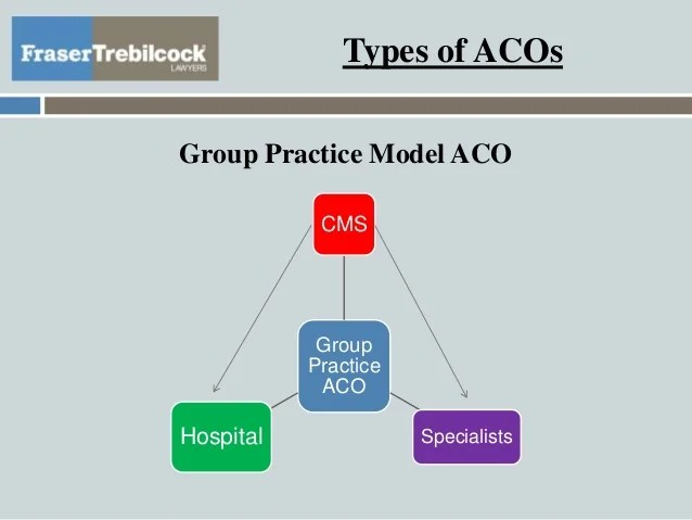 Accountable Care Organizations Operations And Audits