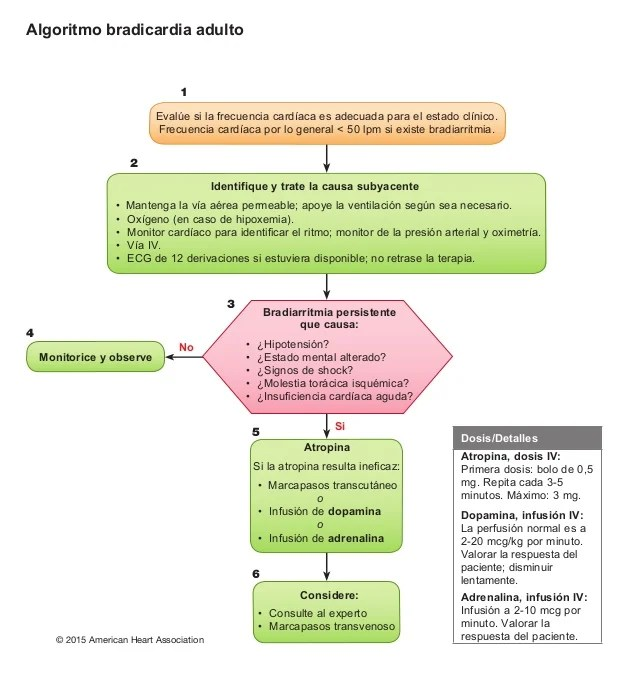 Algoritmo bradicardia adulto 1 2 3 4 5 6 Si No Dosis/Detalles Atropina, dosis IV: Primera dosis: bolo de 0,5 mg. Repita ca...