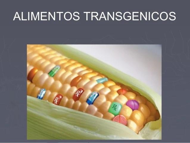 Alimentos No Transgenicos