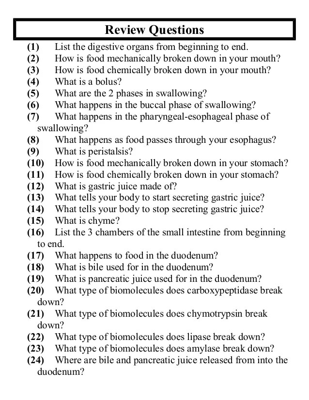 Anatomy Questions And Answers - Anatomy Diagram Book