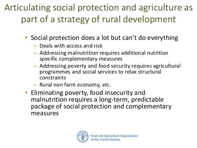 Social Protection and Agriculture for Food Security ...