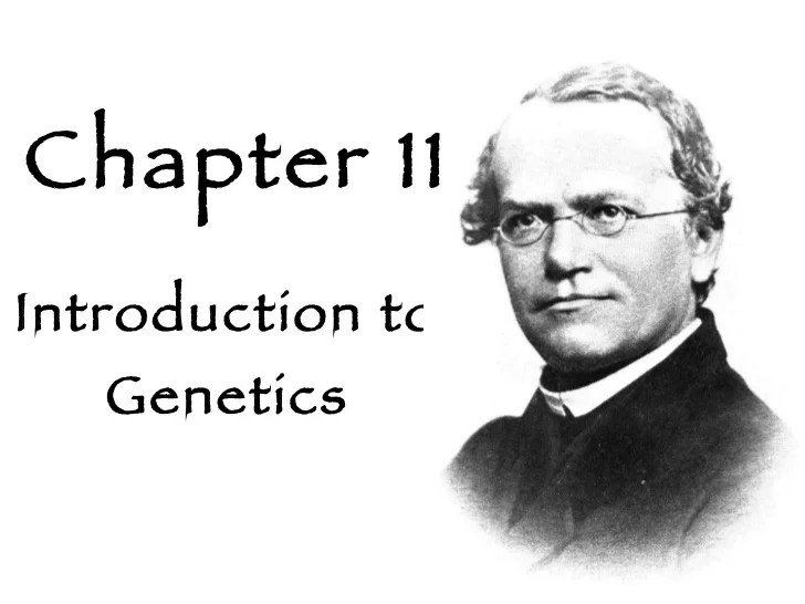 Biology  Chp 11  Introduction To Geics  PowerPoint