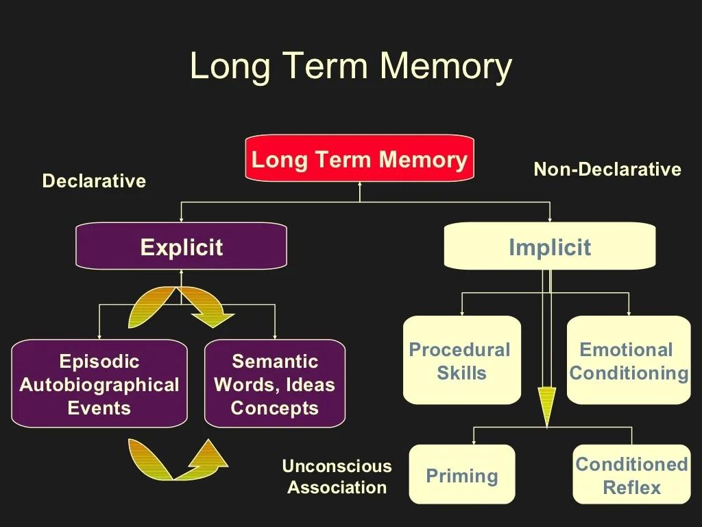 Long Term Memory Long Term