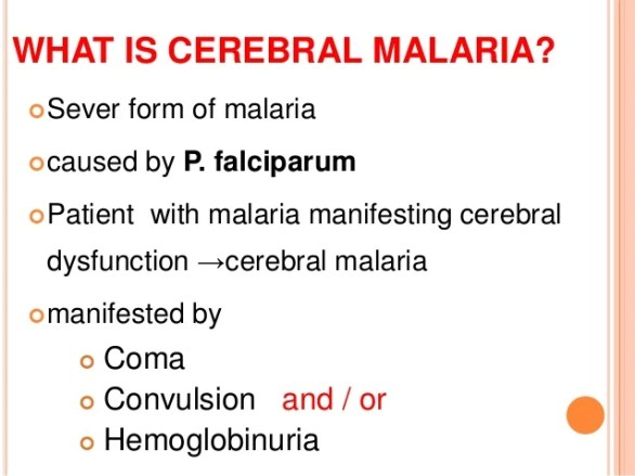 Image result for Cerebral malaria