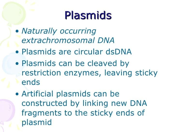 Plasmid Sticky Ends