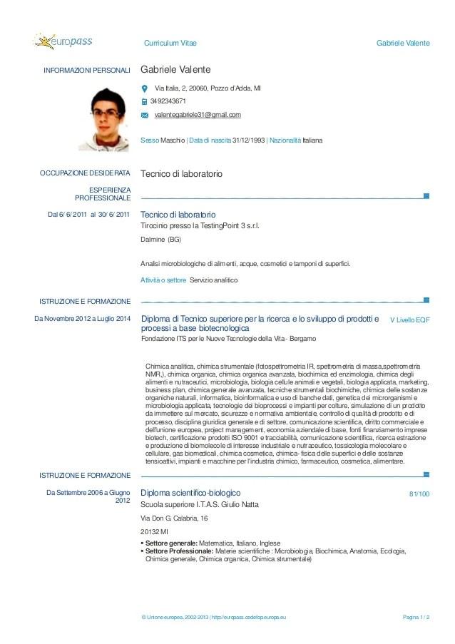 Curriculum Vitae Formato Word