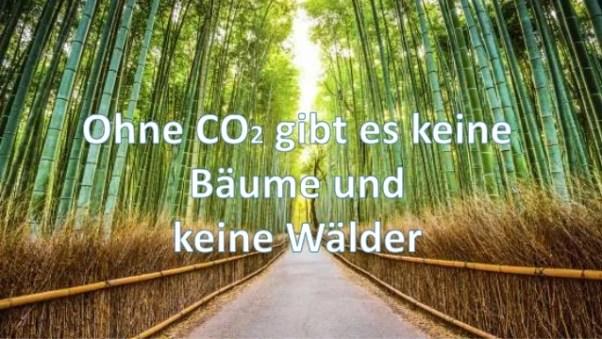 Bildergebnis für leben ohne Kohlendioxid?
