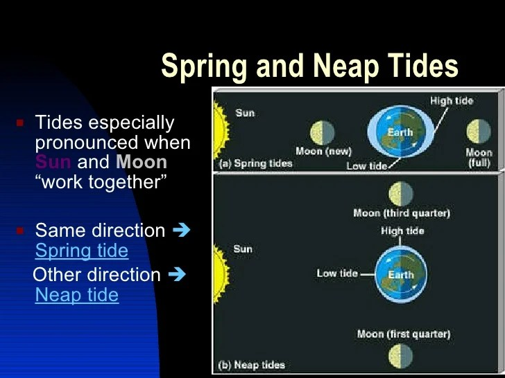 Earth Moon Tides Diagram