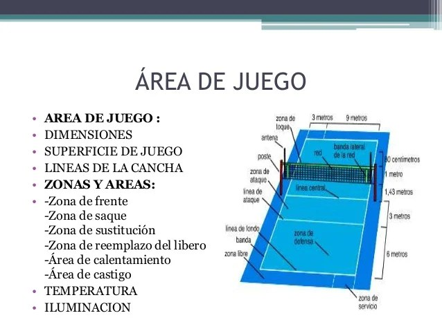 Y Medidas Sus Cancha Voleibol De