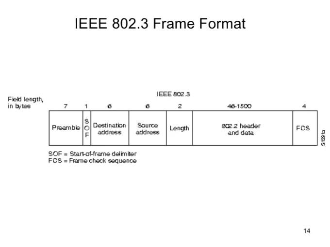 Ieee 802 3 Ethernet Frame Format Ppt | Frameimage.org